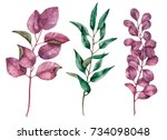set of watercolor leaves  hand... | Shutterstock . vector #734098048
