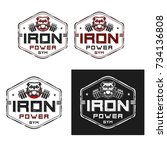 iron power gym emblem vector... | Shutterstock .eps vector #734136808