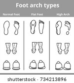 foot arch types vector... | Shutterstock .eps vector #734213896
