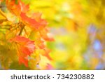 Yellow Autumn Background With...