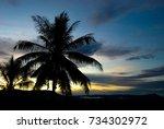 Palm Tree Silhouette With Sky...