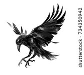 drawing flying crow on white... | Shutterstock . vector #734350942