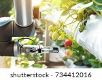 agriculture technology  ... | Shutterstock . vector #734412016