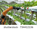 Agriculture Vertical Farming...