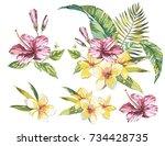 big set watercolor collection... | Shutterstock .eps vector #734428735