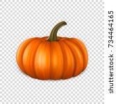 realistic pumpkin closeup... | Shutterstock .eps vector #734464165