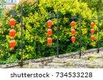 lantern | Shutterstock . vector #734533228