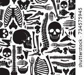 monochrome human skeleton... | Shutterstock . vector #734575945