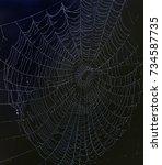 web | Shutterstock . vector #734587735
