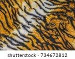 tiger texture skin background | Shutterstock . vector #734672812