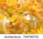 abstract autumn background with ... | Shutterstock . vector #734780722