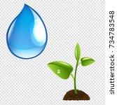 plant with water drop  isolated ... | Shutterstock . vector #734783548