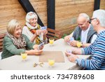 portrait of cheerful seniors... | Shutterstock . vector #734789608