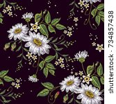 chamomiles embroidery seamless... | Shutterstock .eps vector #734857438