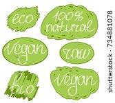 vegan day colorful illustration ... | Shutterstock . vector #734881078