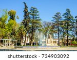 mendoza  argentina   october 01 ... | Shutterstock . vector #734903092