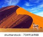 african antelope impala... | Shutterstock . vector #734916988