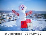 winter activity and party. new... | Shutterstock . vector #734929432