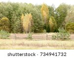 autumn landscape. dark clouds... | Shutterstock . vector #734941732
