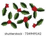 set of christmas mistletoe ... | Shutterstock .eps vector #734949142