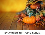 Pumpkins  Gourds  And Leaves In ...