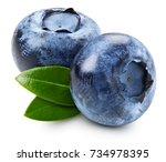 ripe and juicy fresh picked... | Shutterstock . vector #734978395