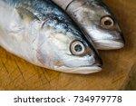 fresh mackerel fish on wooden...   Shutterstock . vector #734979778