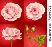 jpeg set of four rose flowers... | Shutterstock . vector #73499026