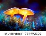 mushroom. fantasy glowing... | Shutterstock . vector #734992102