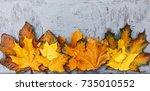 autumn background foliage ... | Shutterstock . vector #735010552