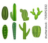 realistic detailed green cactus ... | Shutterstock .eps vector #735092332