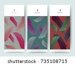 branding packaging tropical... | Shutterstock .eps vector #735108715