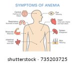 symptoms common to many types... | Shutterstock .eps vector #735203725