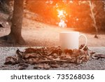 autumn leaves and cup of coffee.... | Shutterstock . vector #735268036