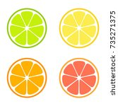 vector citrus slices | Shutterstock .eps vector #735271375