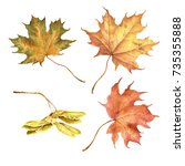 set of colorful autumn leaves.... | Shutterstock . vector #735355888