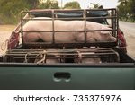 pigs suffer in cages on the way ... | Shutterstock . vector #735375976