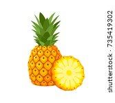 summer fruits for healthy... | Shutterstock .eps vector #735419302