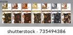 nuts packaging set   2 | Shutterstock .eps vector #735494386