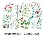 hand drown watercolor set of... | Shutterstock . vector #735519226