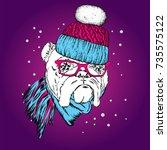 a beautiful puppy in a winter... | Shutterstock .eps vector #735575122