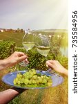 wine and grapes against... | Shutterstock . vector #735584956