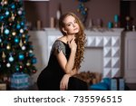 holidays  celebration and... | Shutterstock . vector #735596515