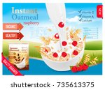 instant oatmeal with berry... | Shutterstock .eps vector #735613375
