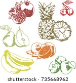 vector illustration. fruit.... | Shutterstock .eps vector #735668962