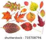 Set Of Different Bright Autumn...