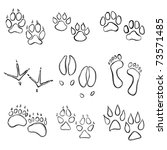 collection of animal paw prints   Shutterstock .eps vector #73571485