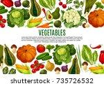 vegetable and mushroom banner... | Shutterstock .eps vector #735726532