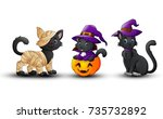 vector illustration of set of... | Shutterstock .eps vector #735732892