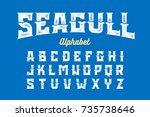 vintage style seagull typeface  ... | Shutterstock .eps vector #735738646